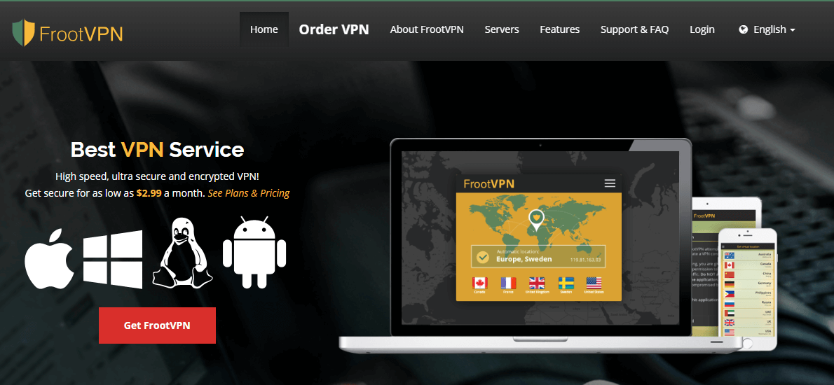 FrootVPN website