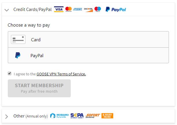 Goose VPN payment plans