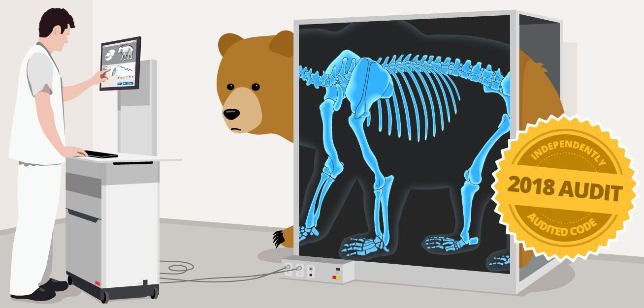 tunnelbear security audit