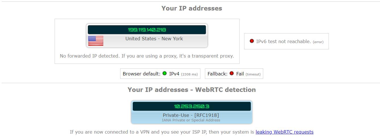 ip leak test results